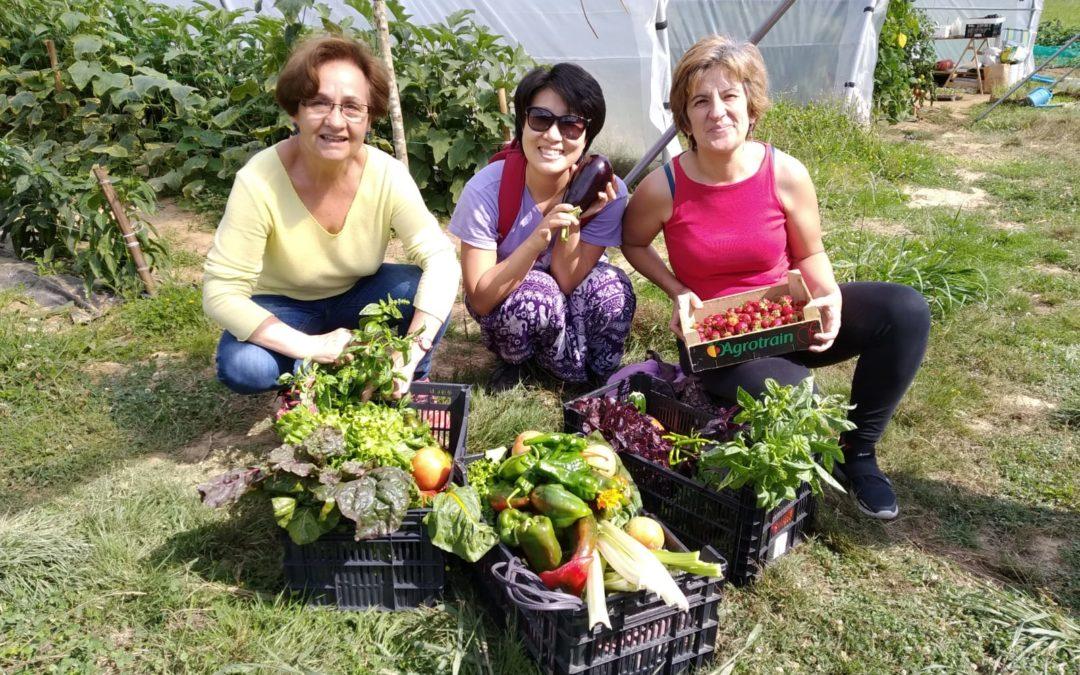 Visita a granja ecológica